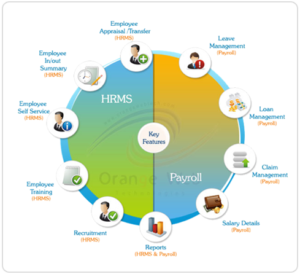 HUMAN RESOURCE MANAGEMENT SYSTEM (HRMS) - Infinite Business